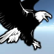 Flying Eagle Challenge Free