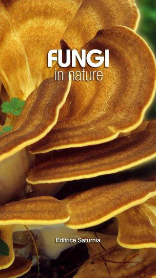 Fungi in Nature