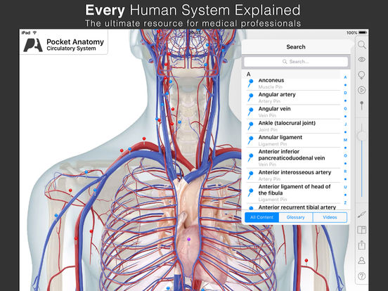 Pocket Anatomy screenshot