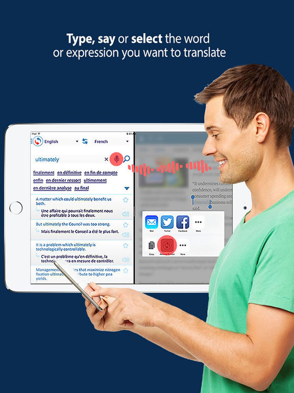Reverso Translation & Dictionary in context screenshot