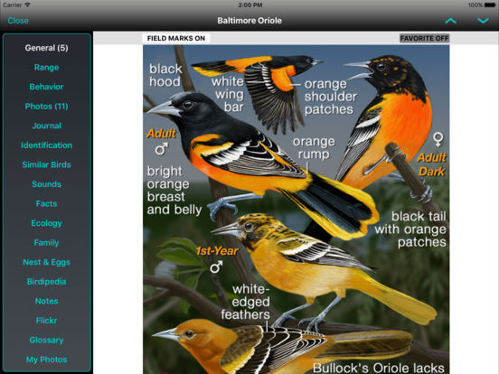 iBird Ultimate Guide to Birds screenshot