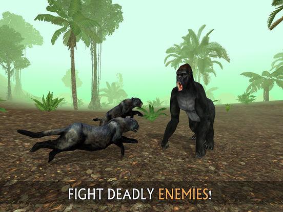 Wild Panther Sim 3D: Rainforest RPG Adventuresscreeshot 3