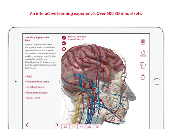 Anatomy & Physiology: Body Structures and Function Screenshots