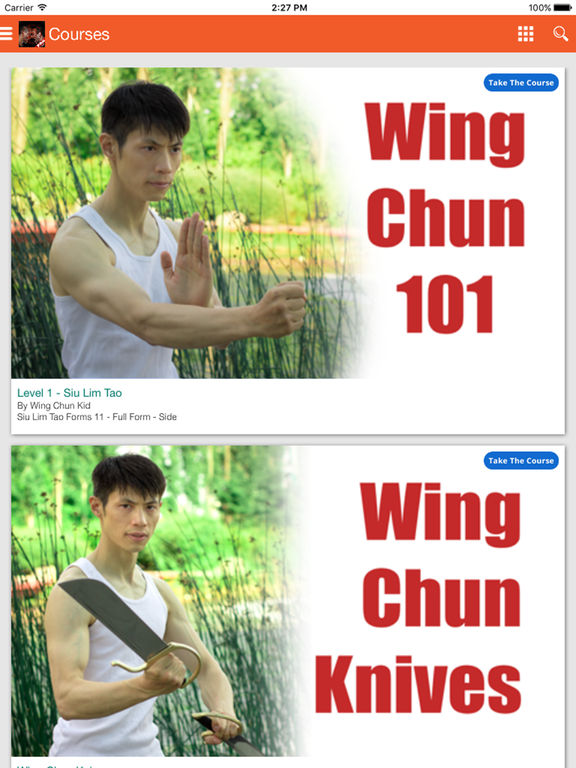Wing Chun Kung-Fu & Chinese Martial Arts for Self Defense screenshot
