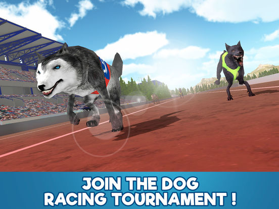 Dog Racing Tournament Sim 3D Full screenshot 5