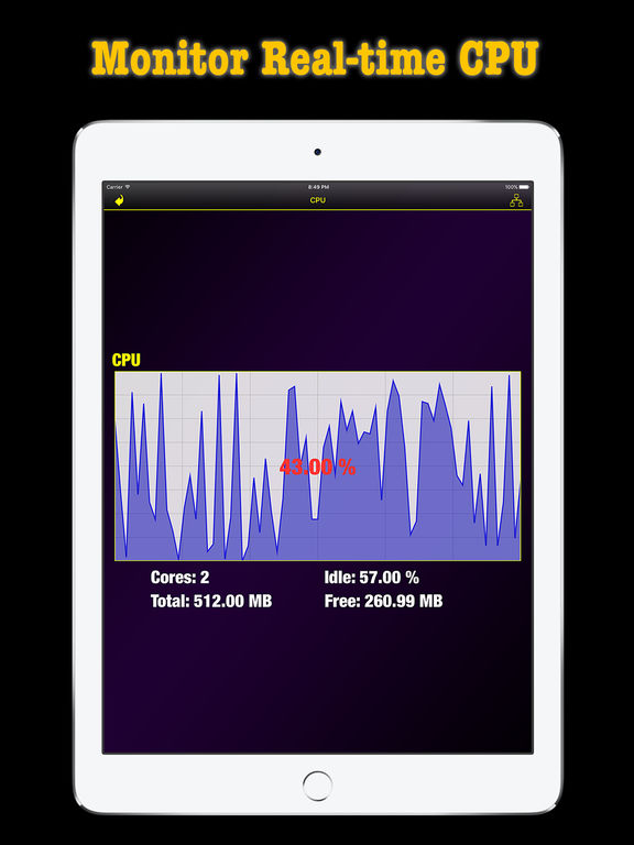 Screenshots of Memory & Disk Scanner Pro - Check System Information for iPad