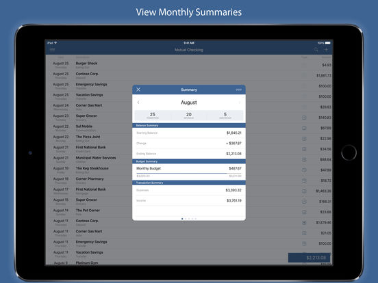 Screenshot #2 for Numero - Personal Finance Manager