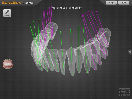 BoneBox™ - Dental Pro 앱스토어 스크린샷