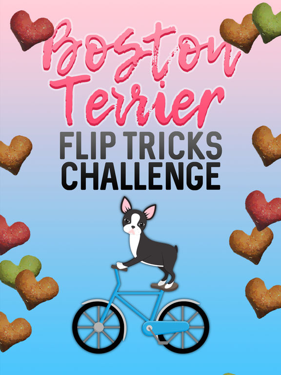 Boston Terrier Flip Tricks Challenge screenshot 3