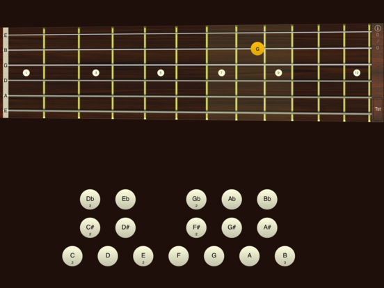 Guitar Sight Reading & Fretboard Trainer iPad Screenshot 2