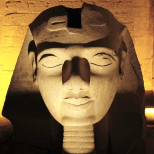 King Tut - Just the Facts