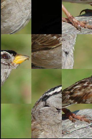 SlidePuzzle - Sparrow screenshot #1