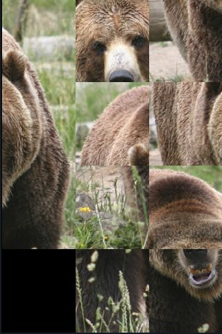 SlidePuzzle - Bear screenshot #1