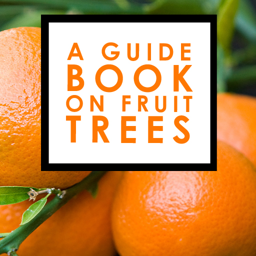 A Guide Book On Fruit Trees