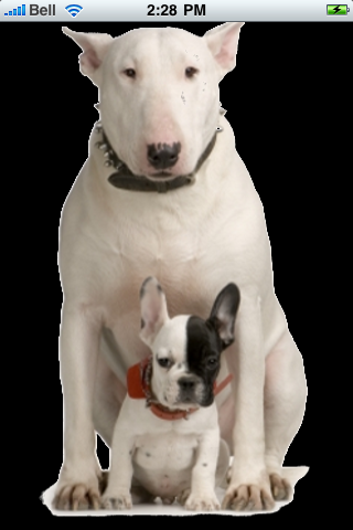 Bull Terrier With Puppy Snow Globe screenshot #1