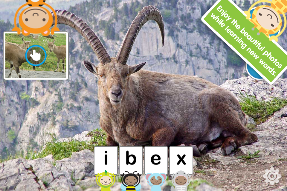 ABC Wildlife! - words about animals with pictures, sounds and videos for kids screenshot 4