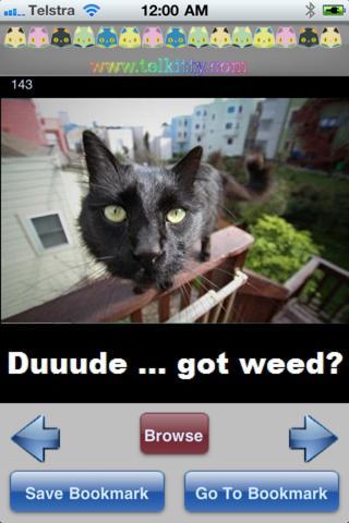 Funny Cats screenshot 5