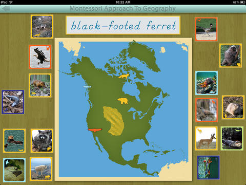 Animals of North America - Montessori Geography screenshot 4