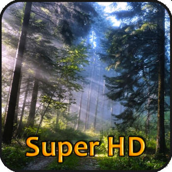 Forests Super HD (for new iPad) - Amazing Wallpapers for iPad