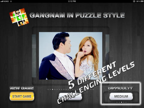 Gangnam in Puzzle Style Pro screenshot 3