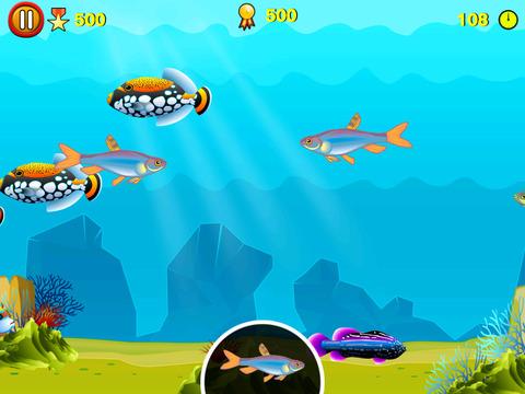 Find D Fish screenshot 5