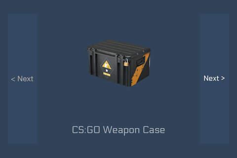 cs case simulator