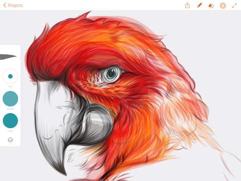 Adobe Illustrator Draw screenshot 9