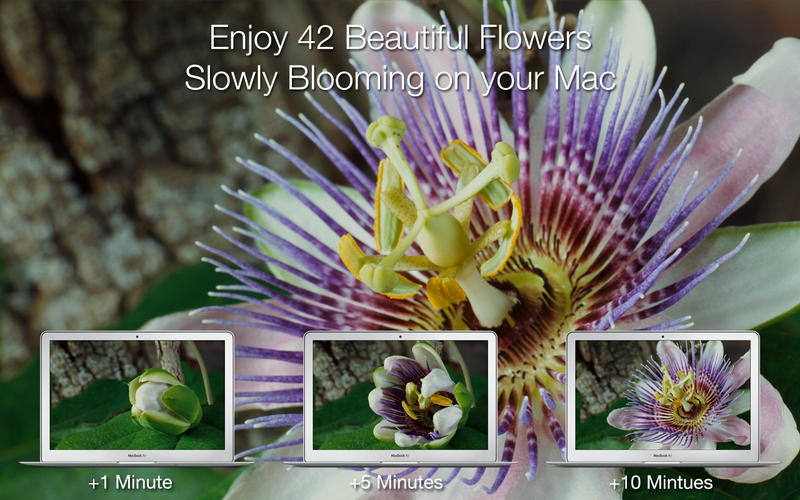 Magic Flowers - Living Wallpaper & Screen Saver screenshot 2