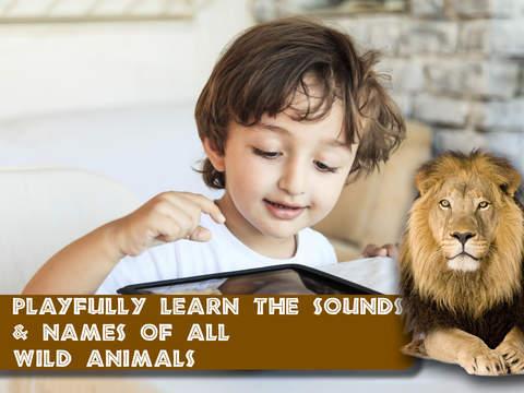 Free Memo Game Wild Animals Photo screenshot 8