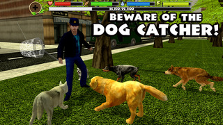 Stray Dog Simulator screenshot 5