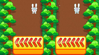Rabbit Rush Run screenshot 1