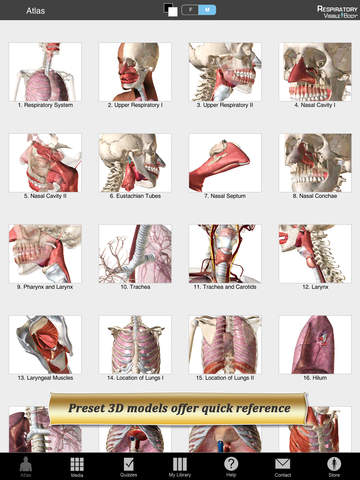 Respiratory Anatomy Atlas: Essential Reference for Students and Healthcare Professionals screenshot 7