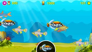 Find D Fish screenshot 2