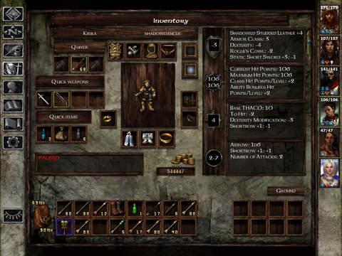 Icewind Dale screenshot 9