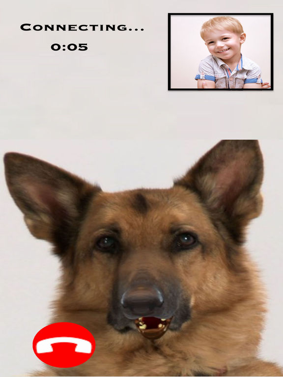 My Talking Dog - Video Call Dog screenshot 2