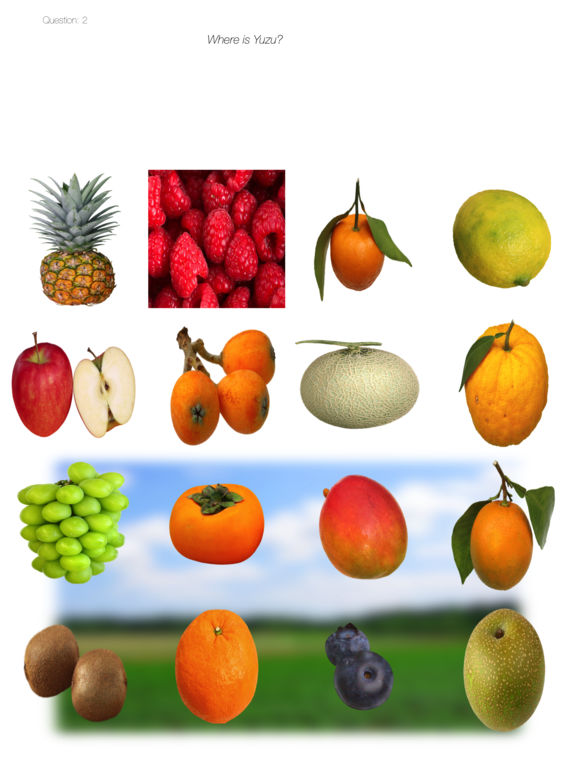 Fruits Quiz Touch :: simple trivia game screenshot 8