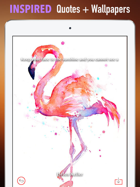 Watercolour Animals Wallpapers HD- Quotes and Art screenshot 10