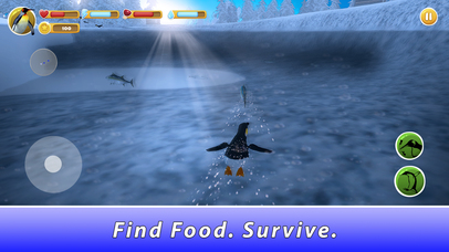 Penguin Family Simulator Full screenshot 3