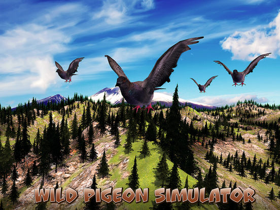 Wild Pigeon Simulator Full screenshot 5