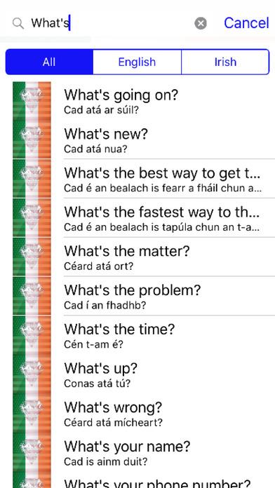 Irish Phrases Diamond 4K Edition screenshot 2