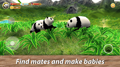 Panda Family Simulator Full screenshot 3