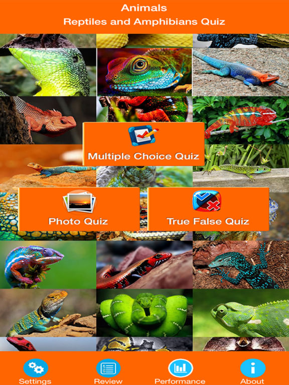 Animals : Reptiles Quiz screenshot 6