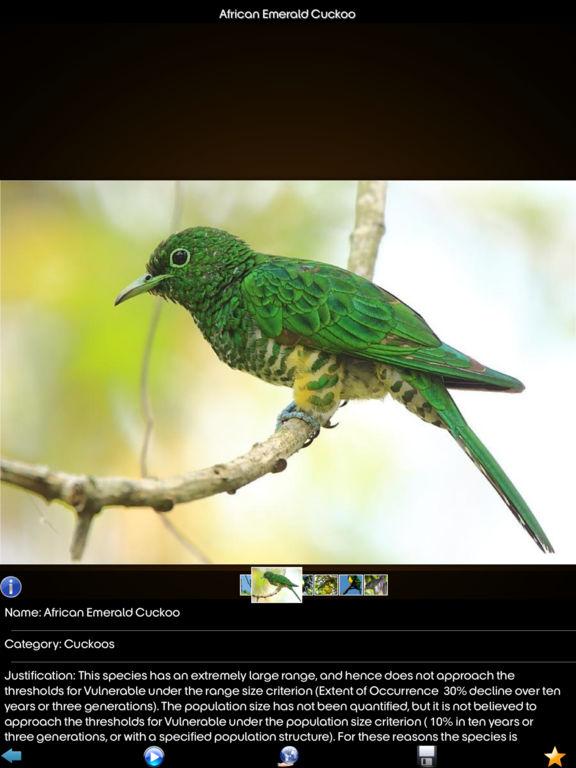 Cuckoos Collection screenshot 10