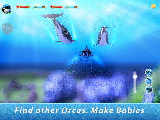 Orca Family Simulator screenshot 6