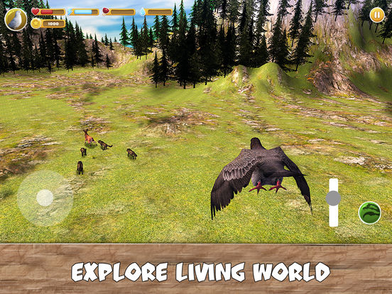 Wild Pigeon Simulator Full screenshot 7