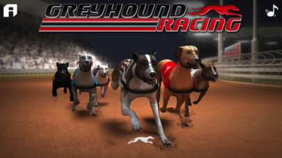 Greyhound Racing ® screenshot 5