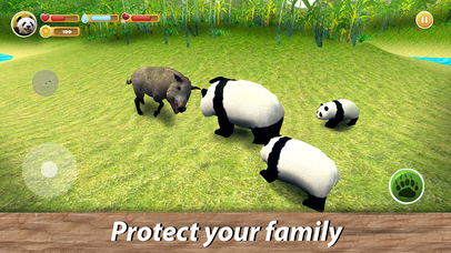 Panda Family Simulator Full screenshot 4