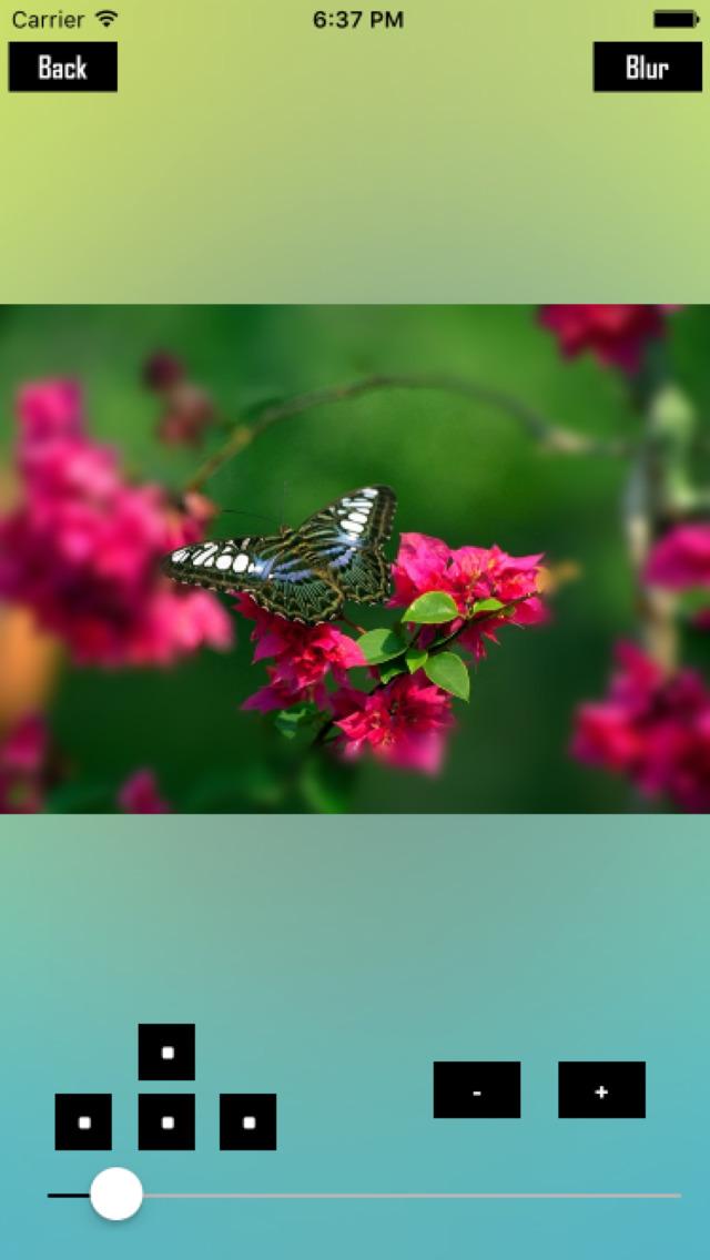 Cine Blur screenshot 3