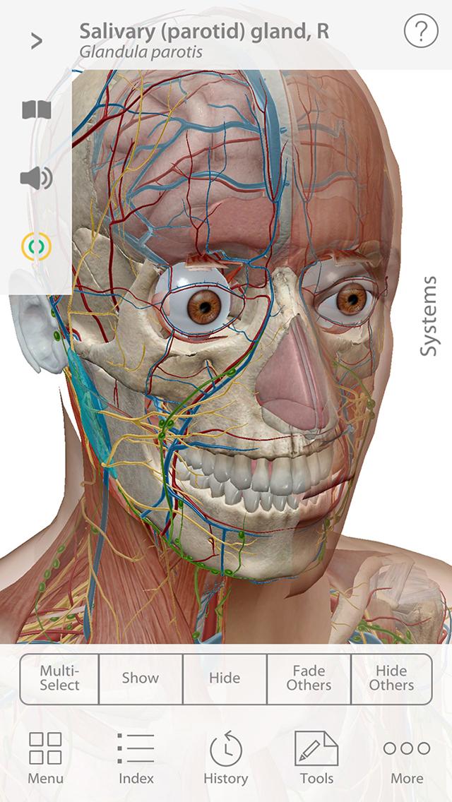 Human Anatomy Atlas 2020 screenshot 3