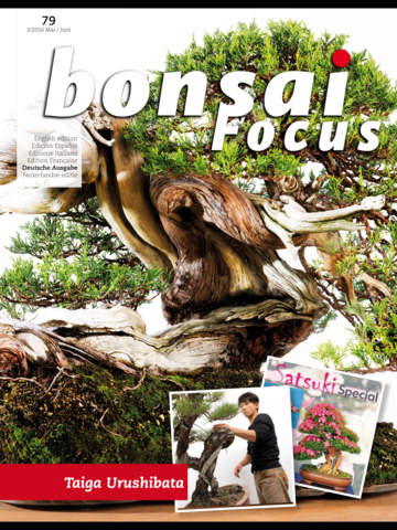 Bonsai Focus DE screenshot 6